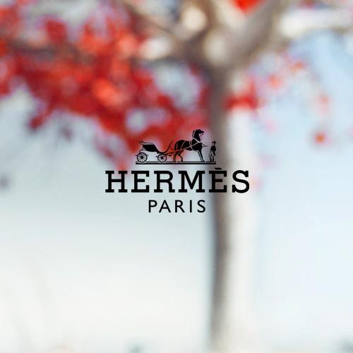 Hermès_V1